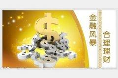 国泰中小盘-晋亿实业股票